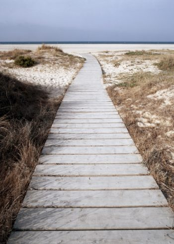 boardwalk towards beach